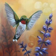 Hummingbird and Lavender